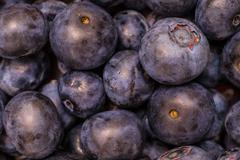 Multiple Fresh Blueberries Stock Photos