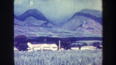 1967: a large area with lots of grass and a mountain around HAWAII Stock Footage