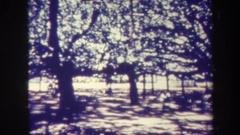 1967: shaded hut outdoor nature trees green HAWAII Stock Footage