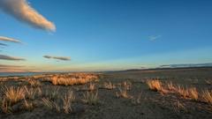 Sunset on the lake Khar-Us Nuur, Mongolia. Full HD Stock Footage