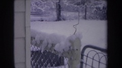 1968: border collie running in snow covered backyard MICHIGAN Stock Footage