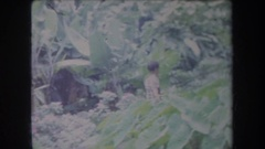 1969: little boy walking through the jungle into a town HAWAII Stock Footage