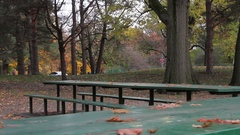 Park benches in beautiful Autumn landscape Stock Footage