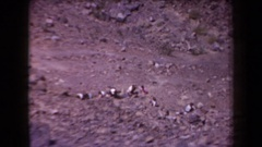 1958: numerous people working among stones on an arid mountain ARIZONA Stock Footage