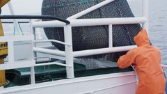 Fisherman Opens Trawl Net with Caugth Fish on Board of Commercial Fishing Ship Stock Footage