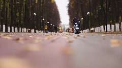 Young man rides electric bike in autumn Park Stock Footage