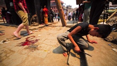 The boy sharpens a knife preparing it for ritual killing of chickens. Bhaktapur Stock Footage