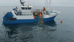 Flying Towards a Commercial Ship Fishing with Trawl Net at the Sea. Smiling Fish Stock Footage