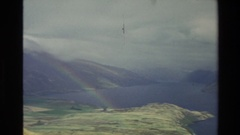 1982: summer day in fiordland national park, new zealand with animals and Stock Footage