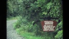 1982: display board on roadside inside a forest NEW ZEALAND Stock Footage