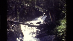 1980: a log forms a bridge between two short cliffs over a river GRAND TETON Stock Footage