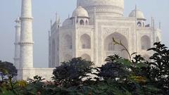 The Taj Mahal in Agra, Uttar Pradesh, India Stock Footage