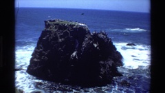 1980: a reef surrounded by breaking waves with an ocean view, seagulls fly Stock Footage