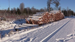 Lumberjack with rope and ax walking near  pile of snow covered logs in winter Stock Footage