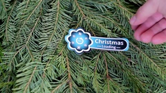 Fir-tree branch Christmas loading sign Stock Footage