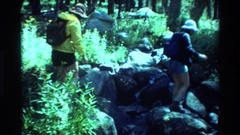 1981: several people strolling among rocks and vegetation in a natural park Stock Footage