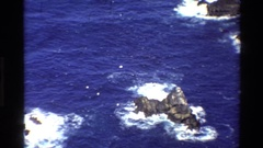 1980: five seagulls flying above a rocky coastline BIG SUR CALIFORNIA Stock Footage