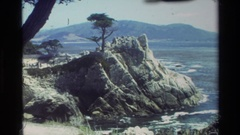 1982: a lone tree on a rocky outcrop with ocean and mountains CARMEL CALIFORNIA Stock Footage
