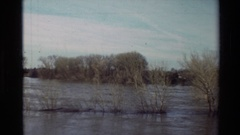 1982: leafless bushy plants standing in the waters of the river SACRAMENTO Stock Footage