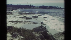 1982: large body of water with rocks around and an animals standing on the shore Stock Footage