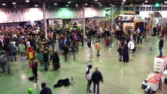 People attend the Gamefilmexpo festival Stock Footage