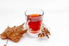 St. John's wort tea on white background Stock Photos