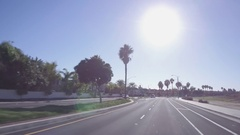 Driving Down A Tree Lined Street In California - Looking Up Stock Footage