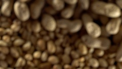 Close up of shelled peanuts rotating. Out of focus. Stock Footage