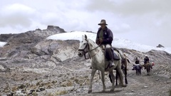 Man riding mules on mountain trail Stock Footage