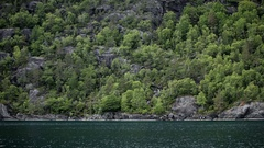 Norway Fjord Coast with trees and rocks. Panorama Stock Footage