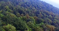 Endless green forests of the Shivapuri Nagarjun National Park in Nepal. Aerial Stock Footage