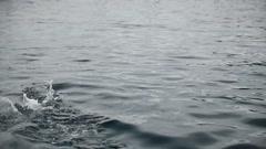 Salmon Farm. Jumping fishes. Salmon life Stock Footage