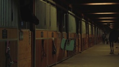 Night stables with horses and attendants background  Stock Footage