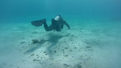 Scubadiver swimming over a sandy bottom, Red sea, Dahab, Sinai Peninsula, Egypt Stock Footage