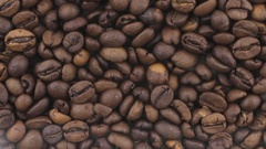 Horizontal panorama of coffee beans, food background. Stock Footage