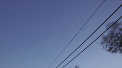 Driving Looking Up At Power Lines, Telephone Poles and Trees Stock Footage