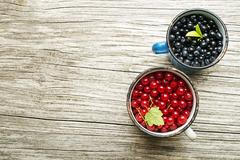 Blueberries and redcurrant fruits on wooden table Stock Photos