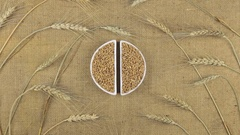 Zoom dish with wheat grains and spikelets of wheat lying on sackcloth. Stock Footage