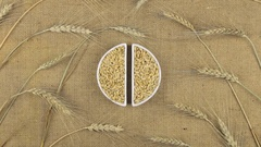 Zoom dish with barley grains and spikelets of wheat lying on sackcloth. Stock Footage