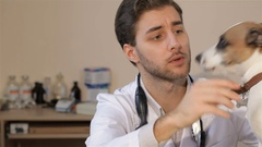 Male veterinarian gives food to the dog Stock Footage