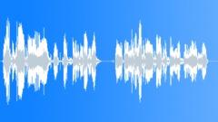 Voice - The next train - James British 02 Sound Effect