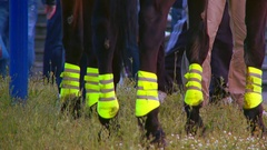 Legs of police horses on public protest. Police horse on the public gathering Stock Footage