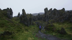 Iceland Myvatn Dimmuborgir lava formations and fields Stock Footage