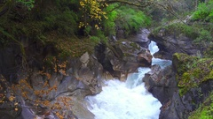 Autumn landscape with mountain river and forest. Stock Footage