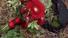 Wedding floral arrangement in a forest on a stump Stock Footage