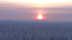 Winter northern sun on the background of the winter forest landscape aerial shot Stock Footage
