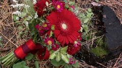 Floral wedding arrangement. the bouquet rests on an old wooden stump Stock Footage