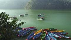 Boats on Phewa lake. Pokhara, Nepal. Panning shot Stock Footage
