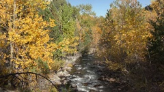 Beautiful Mountain Stream and River with Fall Autumn Colors in Rocky Mountains Stock Footage
