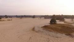 Drone flying up at Nationale Park De Hoge Veluwe Stock Footage